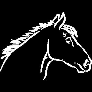 Pferdekopf weiss