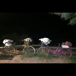 2 Fahrraeder in Oel