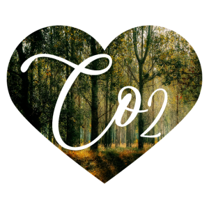 CO2 Herz Wald