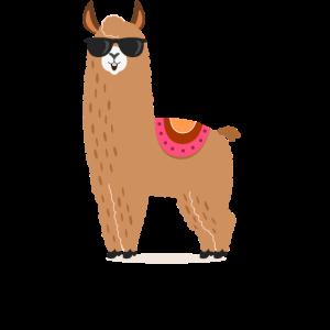 Lama, Alpaka, cool, funny, lustig, Geschenk, Tier,