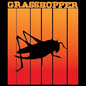 Grasshopper -Schattenspiel im Sonnenuntergang