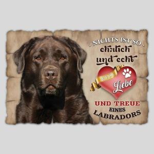 Chocolate Labrador echte Treue & Liebe