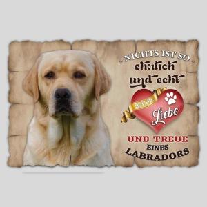 Gelber Labrador echte Treue Liebe