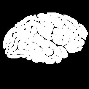 Gehirn Brain