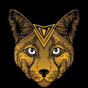 Voyage Lynx