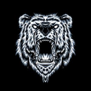 Bären Kopf