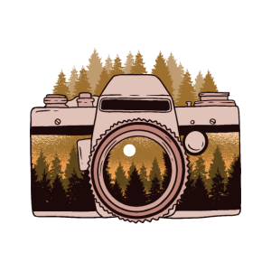 Camara Forest Photograph Kamera