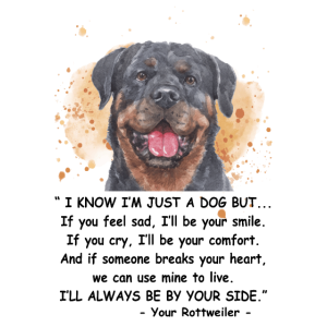 Rottweiler Dog I Know I'm Just A Dog Funny Gift