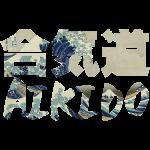 Aikido Big Wave