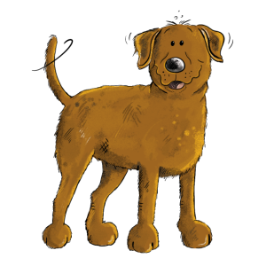 Glücklicher Brauner Labrador Retriever Hund