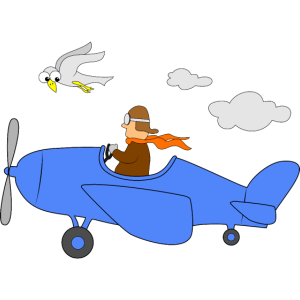 Flugzeug Pilot