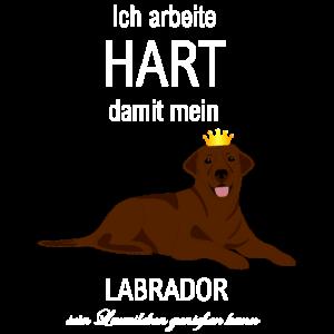 Ich arbeite hart schoko Labrador Luxusleben - Hund