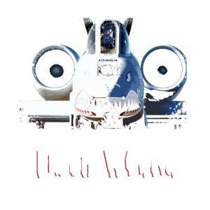 A-10 KAMPFLUGZEUG IT'S JUST A FLESH WOUND