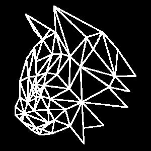 Polygon Katzen Kopf cat head weiss shirt motiv