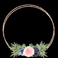 Circle blue_and_rose