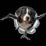 Berner Sennen Hund im *Metall-Loch*