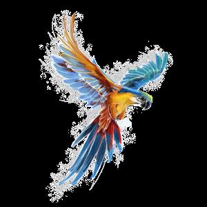 Bunter Ara Papagei im Flug Fan Geschenk
