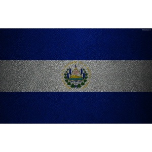 thumb2 flag of el salvador 4k leather texture nort