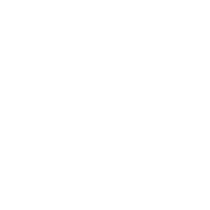 Aspen Lifestyle