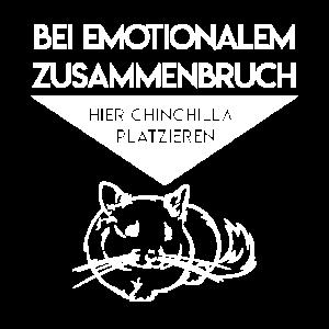 chinchilla emotional