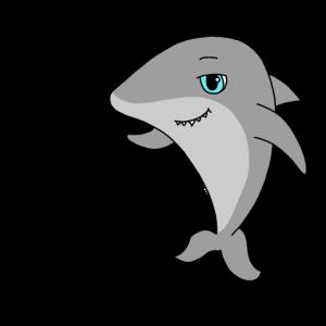 grosser Hai
