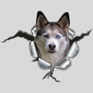 Husky im Metall Loch