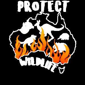 Die Tierwelt beschutzen