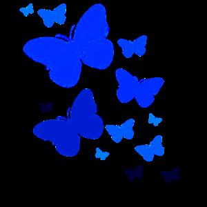 Schmetterling Schmetterling Butterfly Kinder
