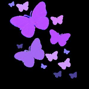 Schmetterlinge Schmetterlinge Butterfly Kinder