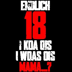 Endlich 18 Geburtstag I koa ois I woas ois T-Shirt