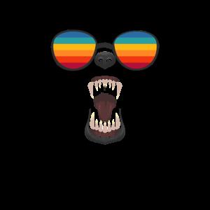 Bear Gay Distressed Rainbow Sunglasses