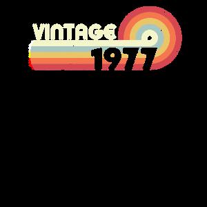 1977 Vintage Design, Geburtstagsgeschenk Tee. Retro