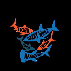 Haie Tigerhai Weißer Hai Hammerhai Mako Drescher