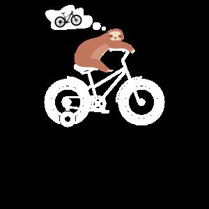 Faultier auf 3Rad träumt von Mountainbike
