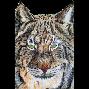 Lynx Pastellzeichnung