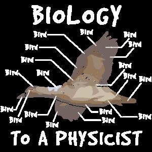 Physik Experte