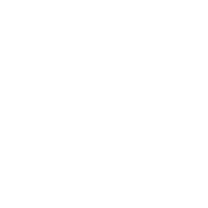 Portrait Katze Britisch Kurzhaar (dunkle Produkte)