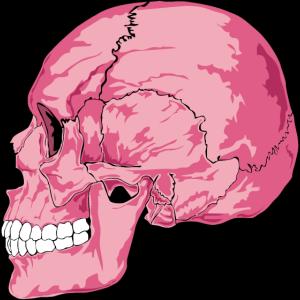 Rosa Totenkopf - pink Skull