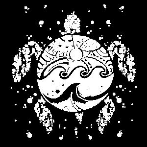 Turtlesurf white
