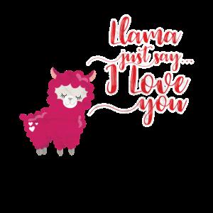 Liebe Lama Geschenk Valentinstag Geburtstag