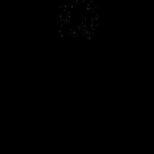 Einhorn Spruch Krafttier