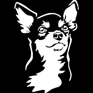 """Chihuahua Kopf """"Black Edition"""""""