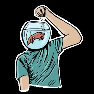 Goldfischgedächtnis
