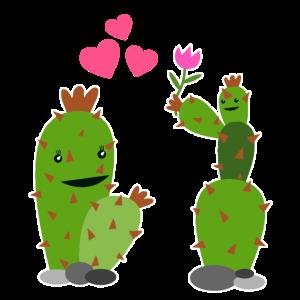 Kaktus Valentinstag Geschenk für Damen Und Herren