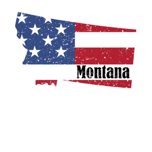 Montana American Flag 4th of July Patriotic Shirt