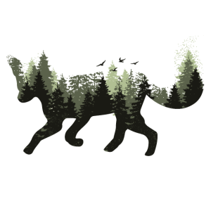 Fuchs Waldtier Bäume Wald Wildnis Silhouette