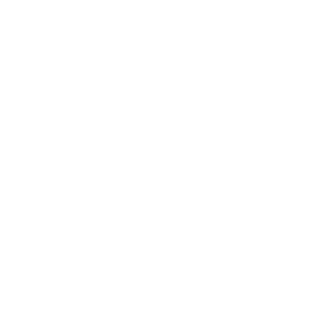 Dosenbier Bier Trinken