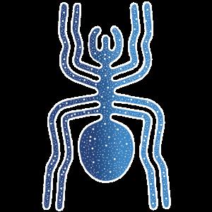 Tier, Nazca-Spinne