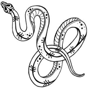 Wild snake (back)