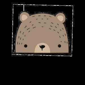 Braunbär Braunbaer Bär Grizzly